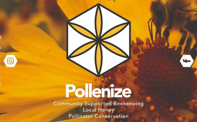 Project pollenize - urban pollinator conservation image
