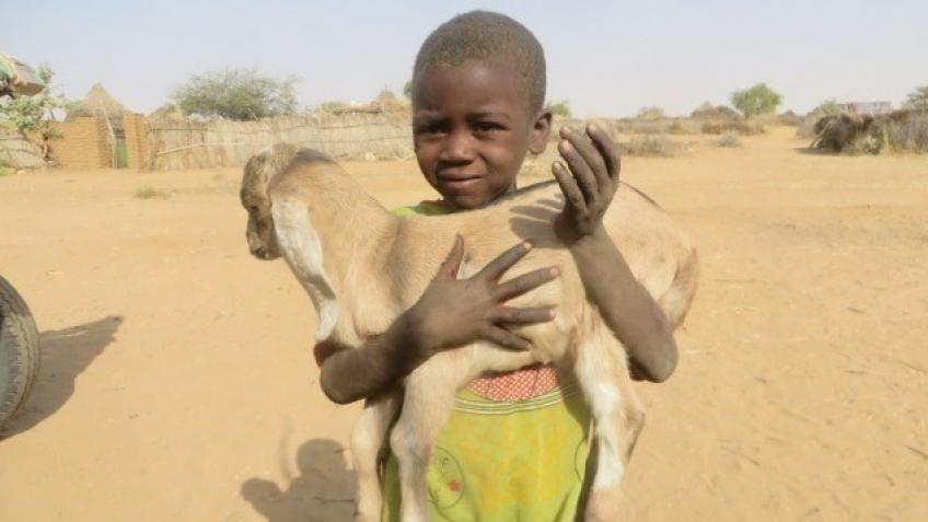 Sustainable Help for Children in Darfur, Sudan