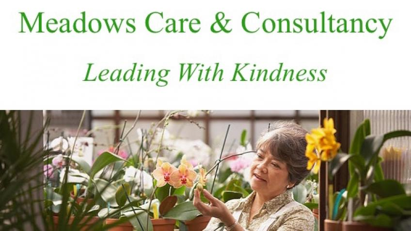 Meadows Care & Consultancy