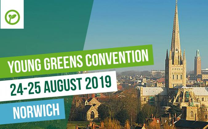 Make young greens convention 2019 accessible! image