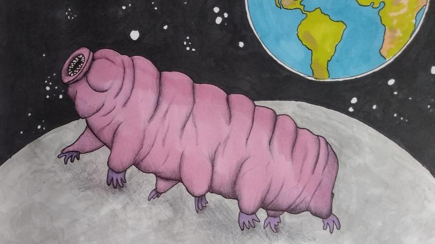 Rescue the water bears
