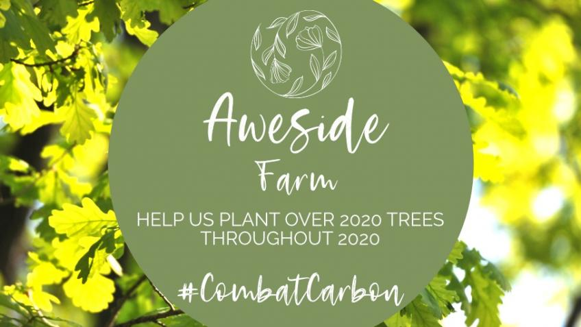 Combat carbon and plant trees with Aweside Farm
