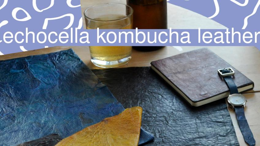 echocella kombucha leather