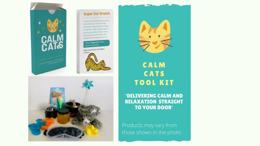 Calm Cats Wellbeing 'Tool Kit' For Children