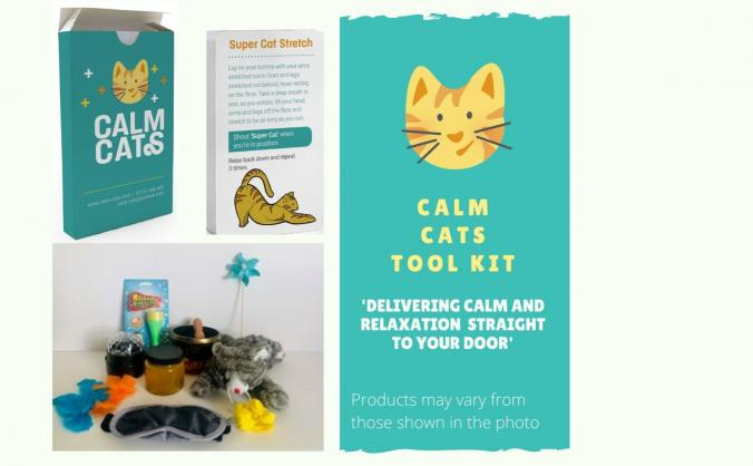 Calm cats wellbeing 'tool kit' for children image