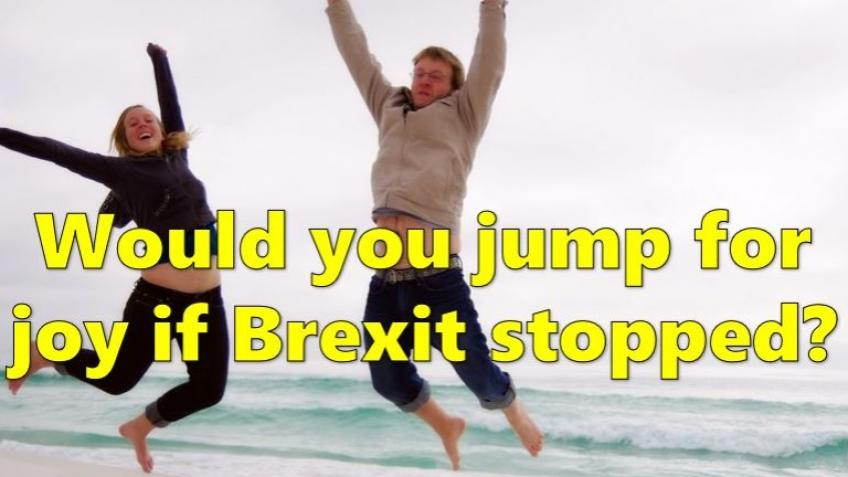 The Stop Brexit Film - a viral video for remain