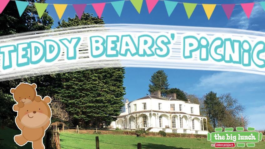 Teddy Bears Picnic Fun Day A Community Crowdfunding