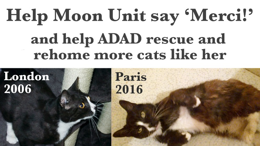 Help Moon Unit say merci!