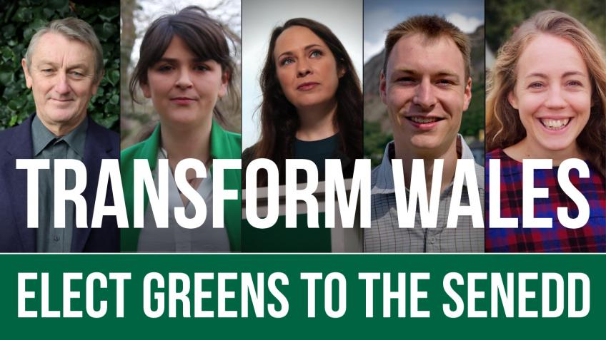 Let's turn the Senedd Green