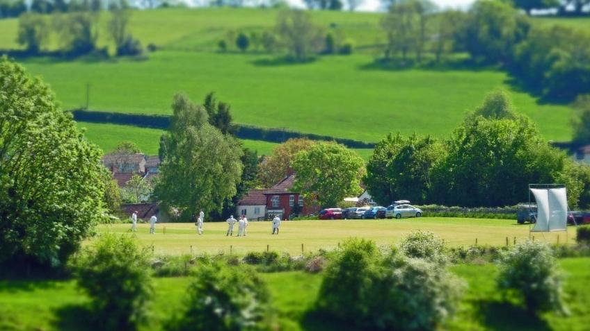 Help Raise £1000 to Fund Blagdon Cricket Club