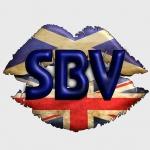 scotlandsbigvoice