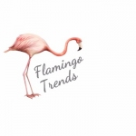 flamingotrends