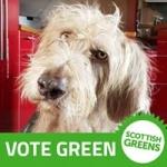 North East Scottish Greens