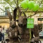 Green Party Cheltenham