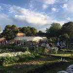 Redcatch Community Garden