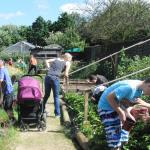 Summerwood Community Garden