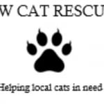 CW Cat Rescue