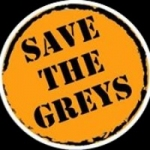 Friends of the Greys