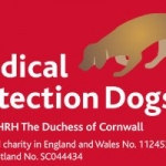 medical-detection-dogs