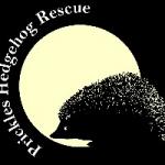Prickles Hedgehog Rescue -  Cheddar