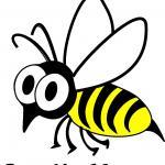 Septic Wasp
