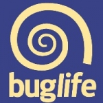 Buglife South West